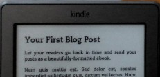 Blog on a Kindle